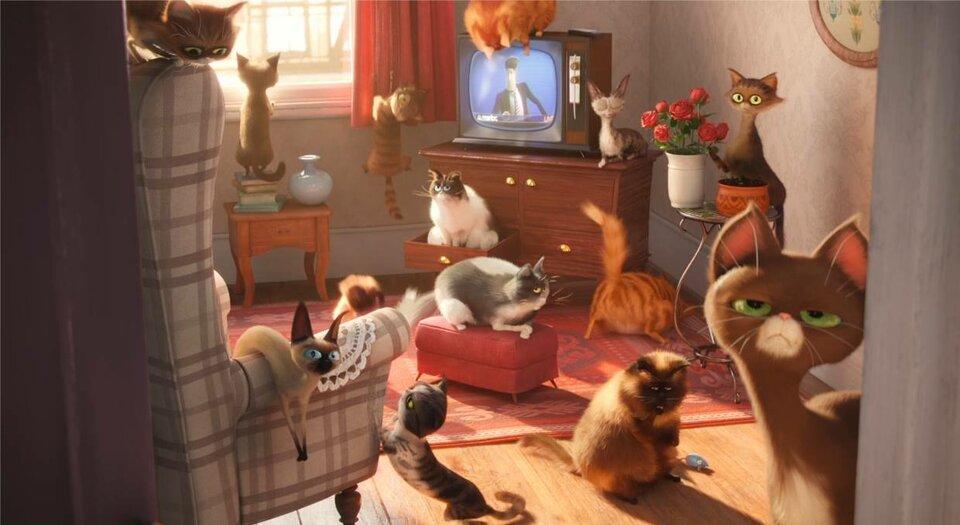 Кадр из мультфильма The Secret Life of Pets (2016)