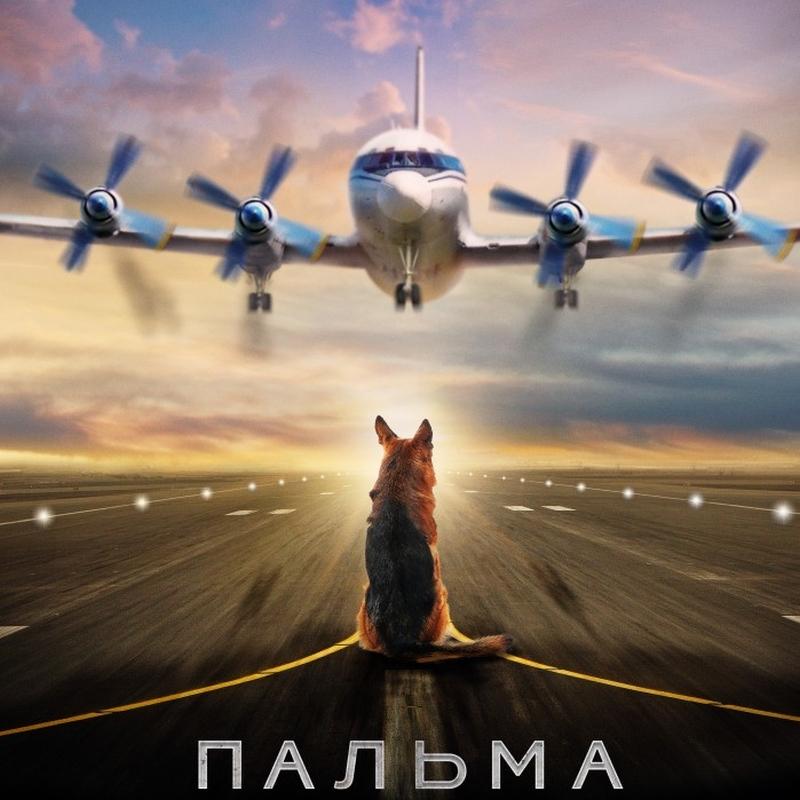 «Пальма» (2020) poster